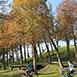 宜蘭縣五結鄉親子同樂,寵物同樂,不限冬山河親水公園春,夏,秋,冬無自然生態,戶外活動四季冬山河親水公園從超大型的龍舟競賽、西式划船,到家庭親子的休閒知性之旅,都令你流連忘返.暢意而歸。自1996年起的每年暑假於親水公園舉辦的『宜蘭國際童玩藝術節』,有來自各國的表演團體演出,還有大型的水上活動,千萬別錯過哦!