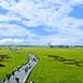 宜蘭縣冬山鄉不限,親朋好友,學生小資稻間美徑(三奇伯朗大道)春無不限,親朋好友,學生小資夏有如天堂般的美景,一望無際的綠油油稻田配上藍天白雲的美景,位於冬山鄉三奇村奉尊宮後方,全長約1.5公里,是條S型的村里道路,因道路兩側為水稻田,每年5月至6月水稻結穗期,是綠油油的一片稻海,到了9月~11月,收割期,則是一片金黃色稻海,隨著季節變化,宛如大地的畫布,登上高塔可將稻禾風光一覽無遺,隱藏在宜蘭冬山三奇村的『稻間美徑』只有季節限定的美景,過來冬山一定不能錯過唷!