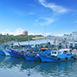 台東縣臺東市家族旅遊,不限富岡漁港春,夏,秋,冬無自然生態,戶外活動,美食購物四季臺東進出綠島和蘭嶼的重要樞紐,因親潮、黑潮在此交會帶來豐富的漁產,許多饕客來此品嘗新鮮海產。鄰近伽路蘭遊憩區、小野柳,是個具有交通與觀光功能的漁港。